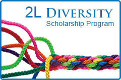 Thompson Hine Diversity Scholarship Program
